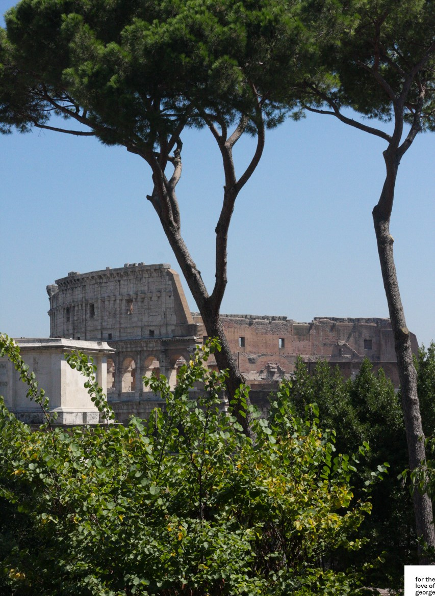 Travels in Italy: Rome; on For the Love of George